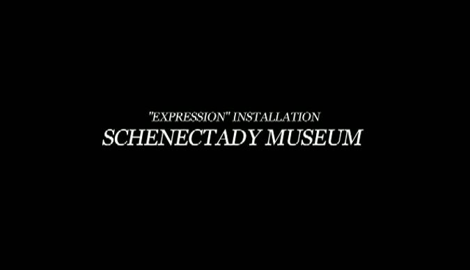 Schenectady Museum Expressions Installation