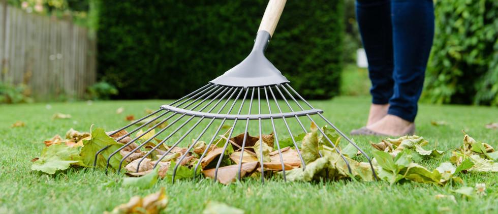 70100261---cs-lh-lawn-leaf-rake-closeup_
