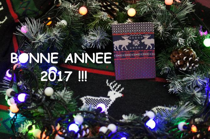 Bonne année 2017! Pleins de voyages en perspective