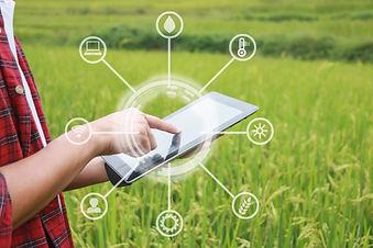 stock-photo-smart-farming-using-modern-t