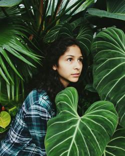 Marisol Hernandez, Volunteer Park Conservatory.