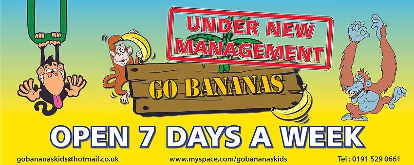 go bananas sunderland