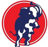 BCYR logo.jpg
