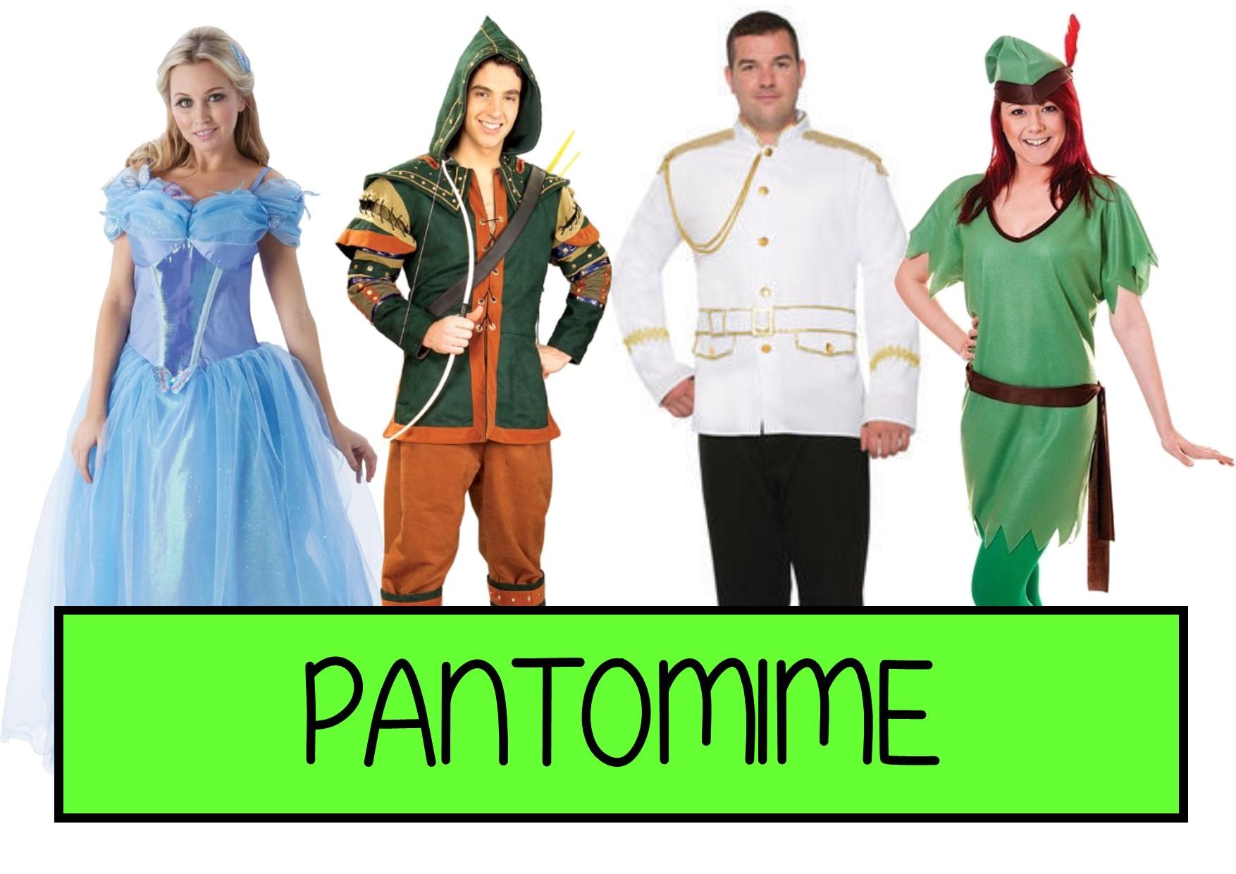 pantomime fancy dress ideas