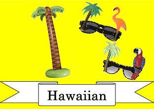 funzone fancy dress and dancewear st albans hertfordshire accessories hawaiian