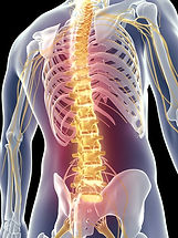 an-epipen-for-spinal-cord-injuries-1_edi