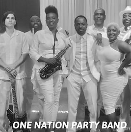 One Nation Party band.png