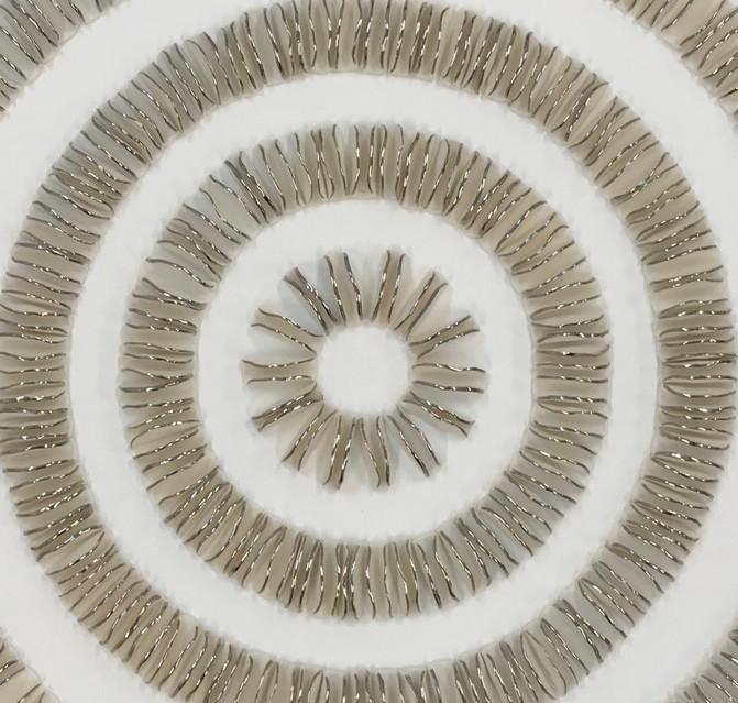 Ammonite Detail