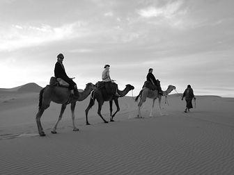 Camels 3 b+w.jpg