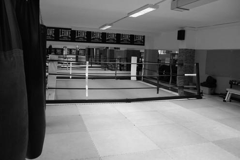 Sala Fight