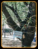 _PicsArt_05-30-07.12.19.jpg