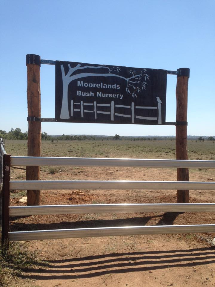 Moorelands Bush Nursery