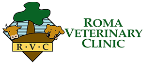 Roma Veterinary Clinic