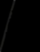 logo_soiréePrimeTime.png