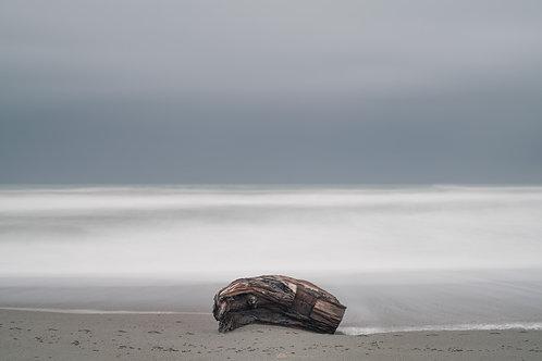 Redwood drift