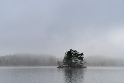Island haven