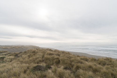 Lost dunes