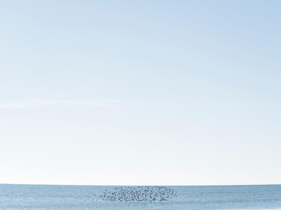 untitled-25-3.jpg