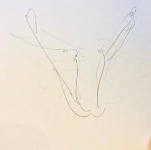 Urdhva Upavistha Konasana - drawing by ©Yanna