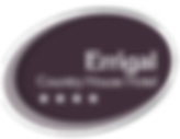 errigal-logo.png