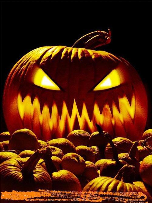 Halloween Boo Bash,
