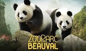 zoo de Beauval.png
