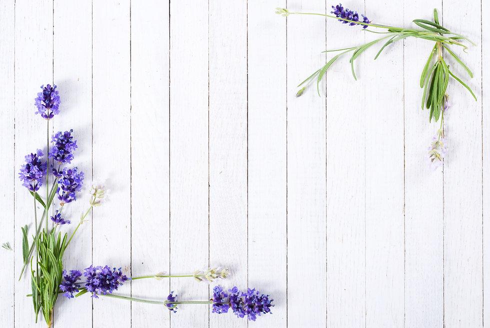 fresh lavender flowers on white wood tab
