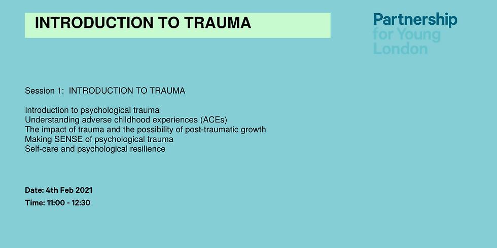 Introduction to Trauma (Session 1)