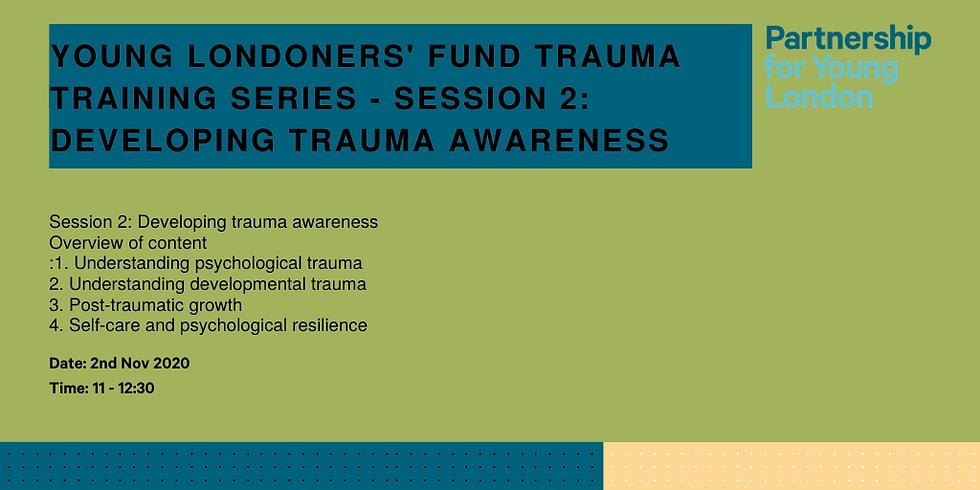 Young Londoners' Fund trauma training series - Session 2: Developing trauma awareness