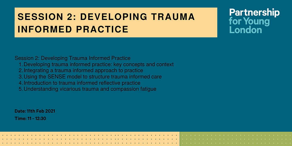 Developing Trauma Informed Practice (Session 2)