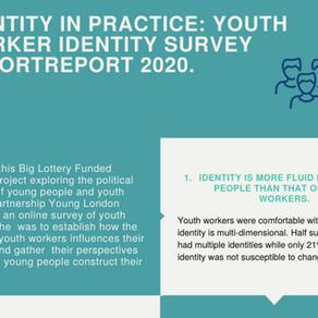 Youth Identity Survey Infographic