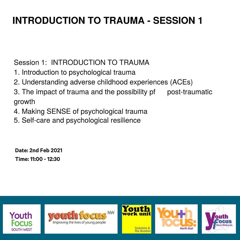 Session 1: Introduction to trauma