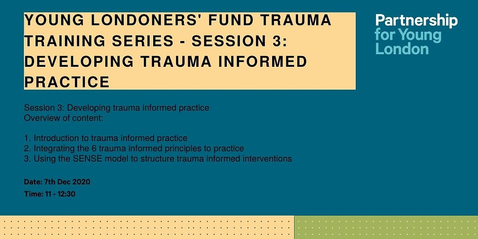 Young Londoners' Fund trauma training series - Session 3: Developing trauma informed practice