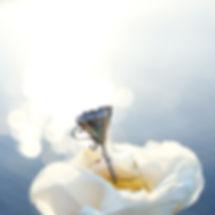 phentom-rose-water-3.jpg