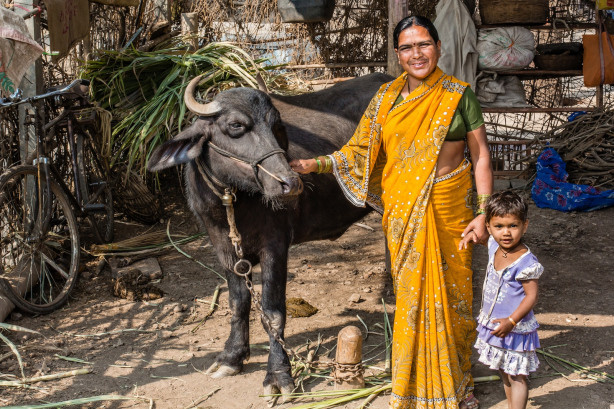 Shobha could not find employment for years till she started on her own, raising buffalos and selling milk