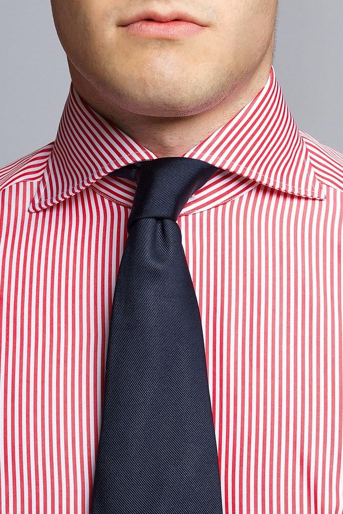 Sebastian-Ward-Shirt-Tie