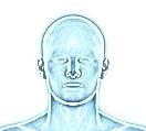 Kręgosłup szyjny