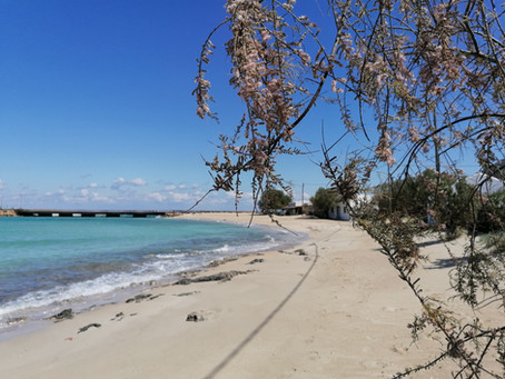 Spring walk at Diakofti Beach