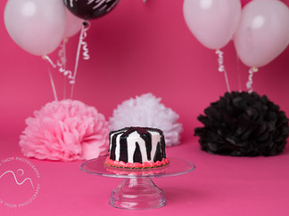 Zebra theme cake smash Aberdeenshire