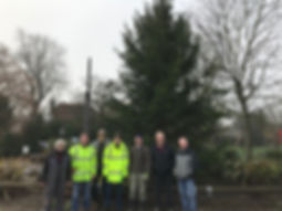 Christmas Tree 2019 (1).jpg