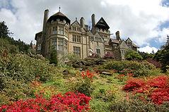 cragside_house_gardens_large.jpg