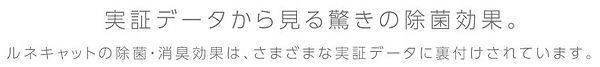 效果TITLE.JPG