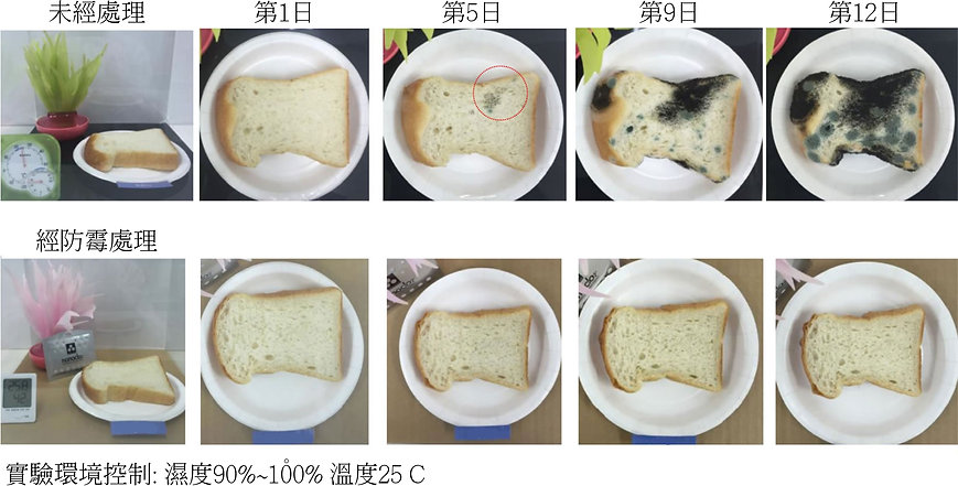 mold resistant experiment.jpg