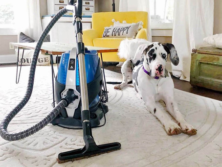 Case Study - Sirena Vacuum (From $250,000 to $500,000 a month)