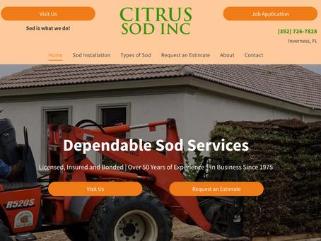 Case Study - Citrus Sod ($75,000 in 3 Months)