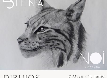 Exposición Dibujos de Francisca Dyer