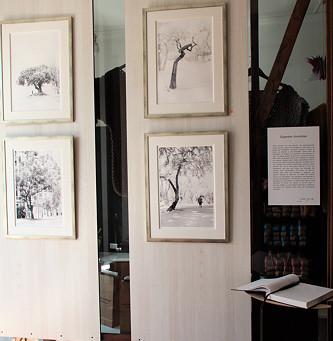 Gigantes Invisibles - Exposición de Fotografías de Jose Guridi
