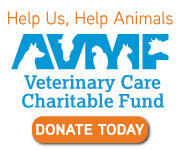 veterinary care charitable fund, donate, donation, charity, payment, good samaritan, care, animals, pets