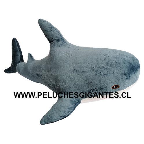 Tiburon 1,2 metros