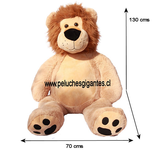 León Tierno 1,3 metros